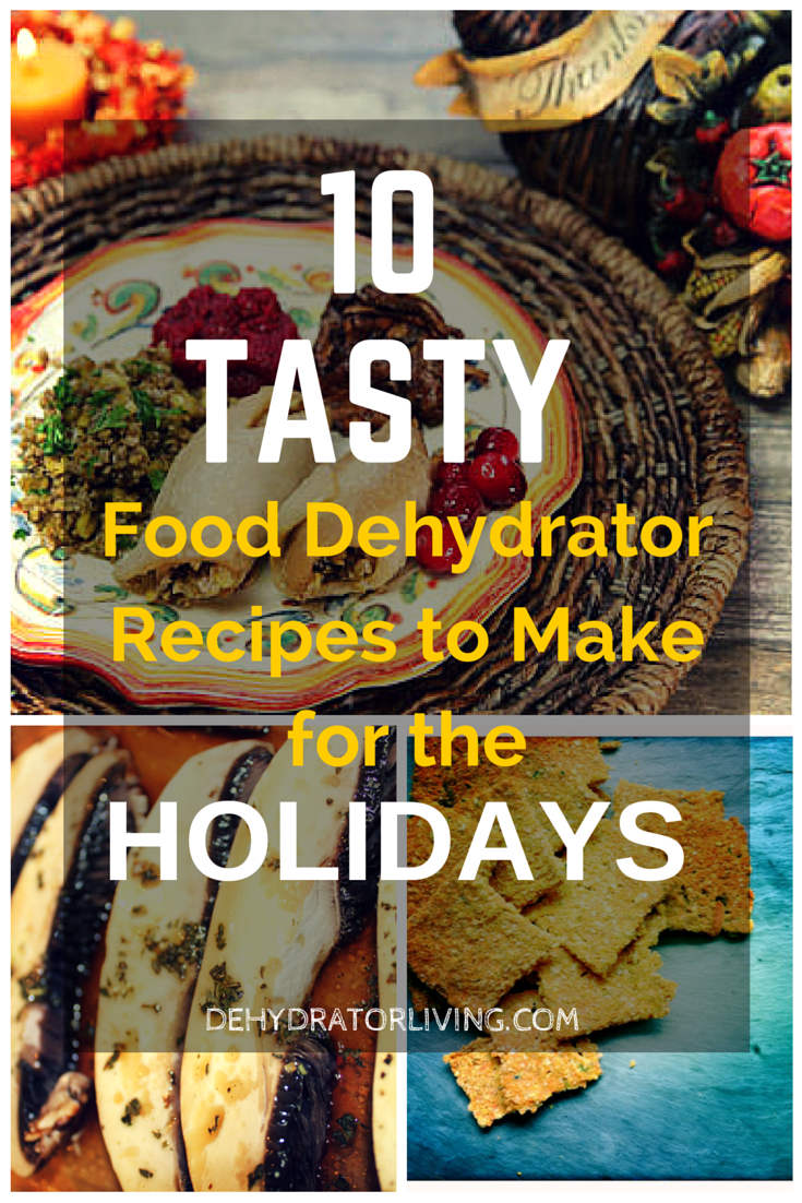 10 tasty food dehydrator recipes to make for the holidays raw corn bread forumfinder Images